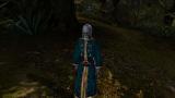 Morrowind Pilgrim, День 2, 10.42 0001.png