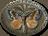 Орден Мотылька-Предка - От аптеки &quot;Под Св. Алессией&quot; авторам конструктивных теорий и интересных наработок по теме вселенной TES.<br />