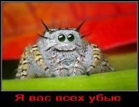 Фотография пользователя Zloy Pauchok
